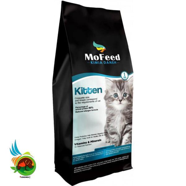 غذای بچه گربه مفید