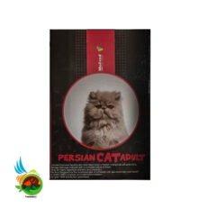 mofeed cat persian
