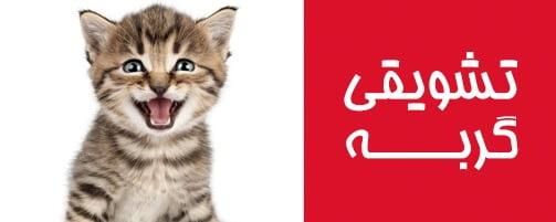 غذای گربه مکمل