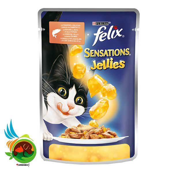 پوچ ژله ای فلیکس با طعم سالمون