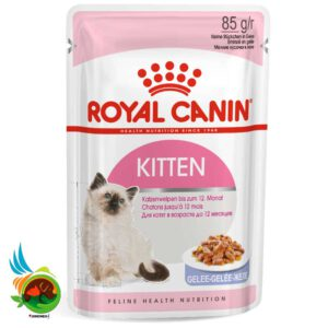 پوچ گربه رویال کنین مدل Kittin